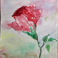 Rose ~ Watercolor