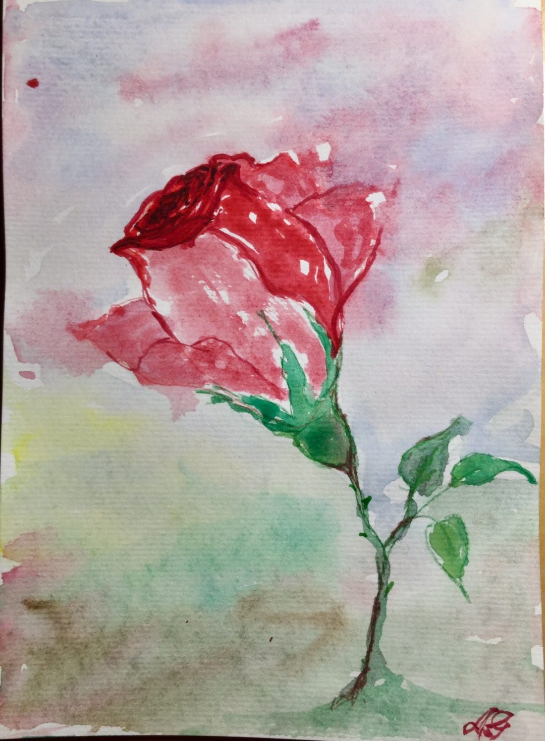 Rose Watercolor by A. Garden